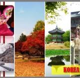 koreaMuslim